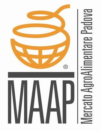 Logo Maap